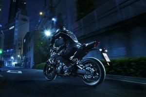 Yamaha MT 03 rear