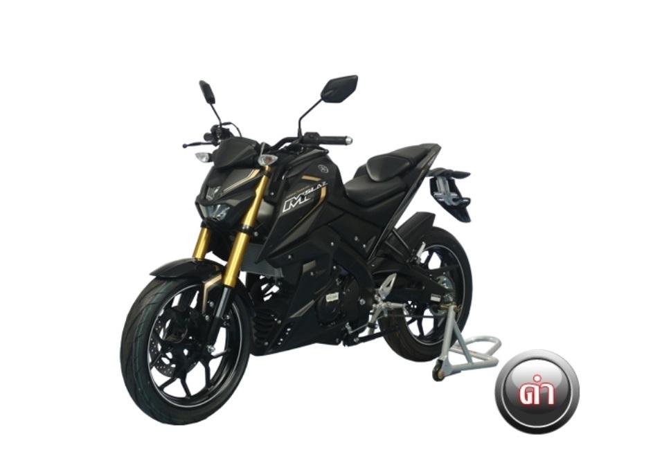 Yamaha MT 15 Facebook: Yamaha M Slaz (MT-15) India Launch, Price, Images