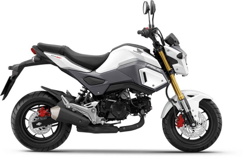 Honda MSX125 Grom dual-tone
