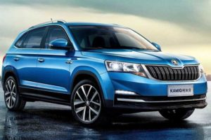 Skoda Kamiq India Features