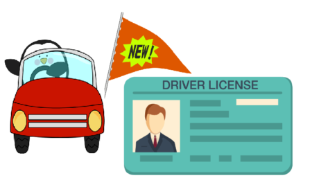 Smart Driving Licenses & RCs