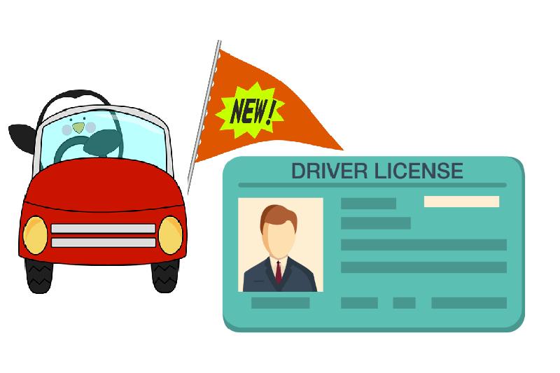 Smart Driving Licenses & RCs